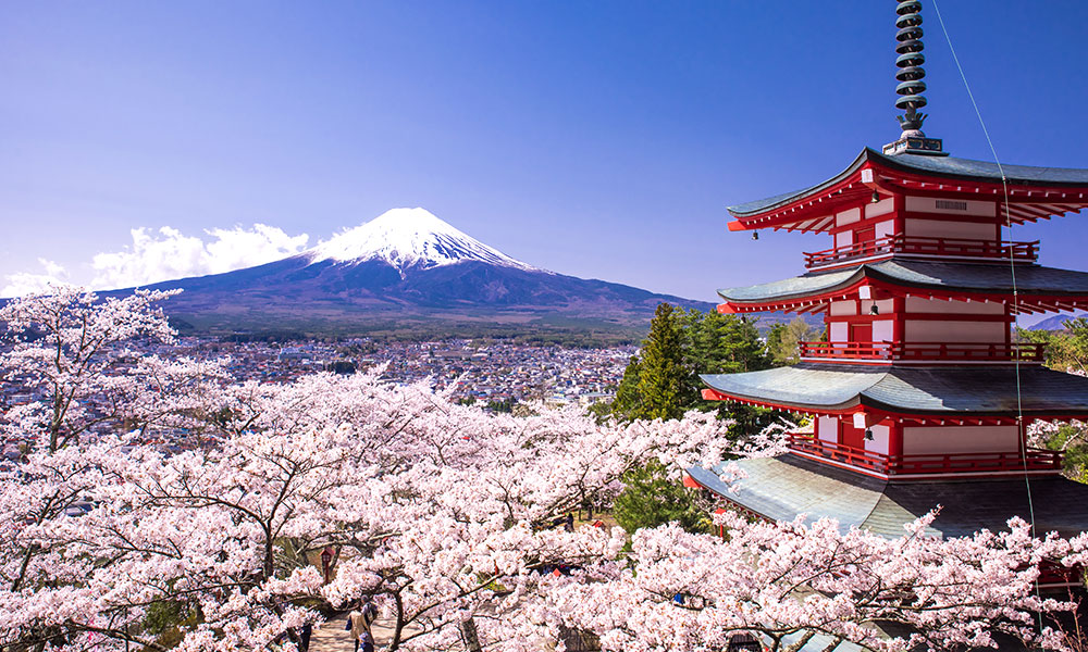 Stock photo of Japan with cherry blossoms and mountain