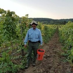 Vineyard Manager Miguel Ortiz